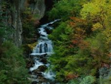 小溪 瀑布图片