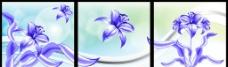 花卉装饰画图片