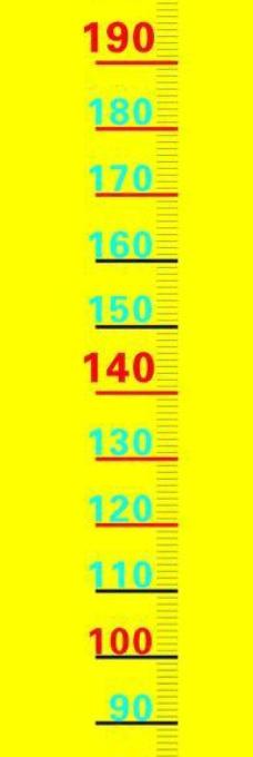 身高测量标尺图片