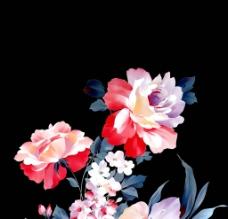 手绘韩国花卉图片