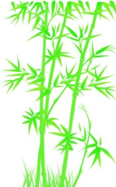 绿叶 叶子图片,树叶 椭圆形叶子 叶脉 绿色 清新-图行