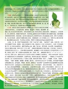 绿茶彩页反图片