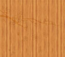 移门 木纹图片