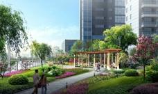 城市河畔公寓高楼公园