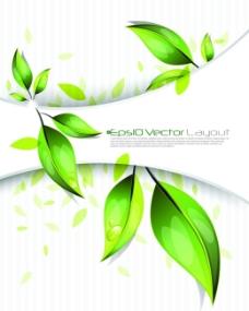 矢量绿叶水珠图片背景