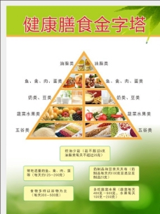 健康膳食金子塔图片