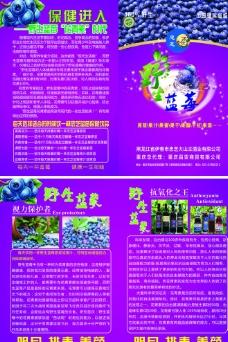 忠芝野生蓝莓 宣传单图片