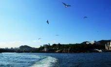 大连海景图片