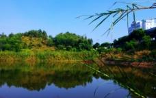 城市山水 绿色生态图片