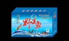 丹江野生鱼 (平面图)图片