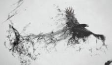 中国风鸟素材图片