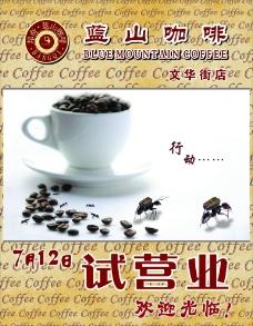 邦奇蓝山咖啡图片