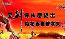 泰康人寿海报图片