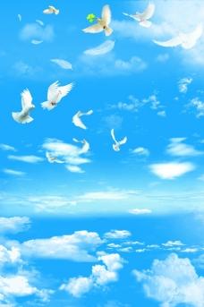 云朵鸽子图片